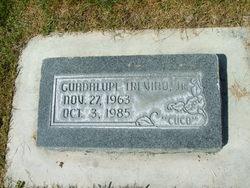 Guadalupe Trevino, Jr