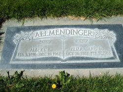 Albert Ludwig Allmendinger