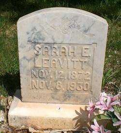Sarah Elizabeth <I>Canfield</I> Leavitt