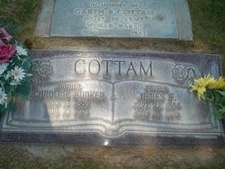 James Franklin Cottam