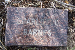 Charlotte Catherine Barnes