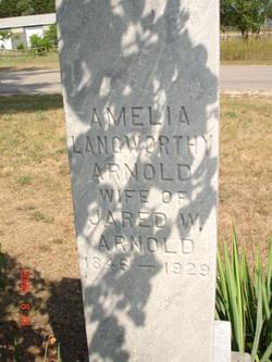 Amelia <I>Langworthy</I> Arnold