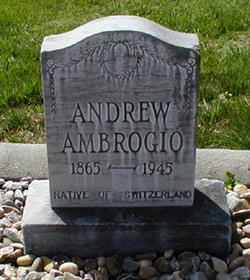 Andrew Ambrogio