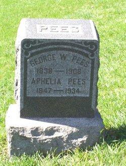 George W Pees
