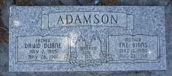 David Duane Adamson