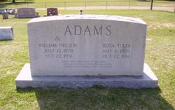 William Nelson Adams