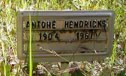 Antone Hendricks