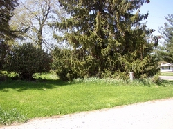 Fishville Cemetery