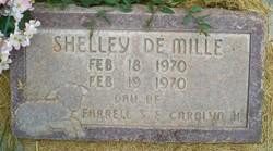 Shelley DeMille