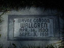 Wayne Gordon Wallgren