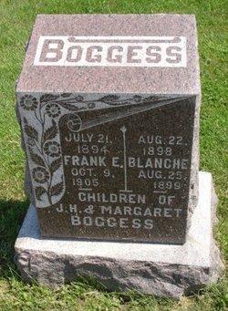 Frank E Boggess