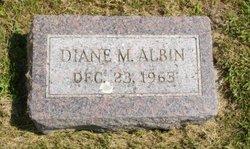 Diane M Albin