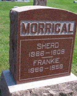 Sherd Morrical