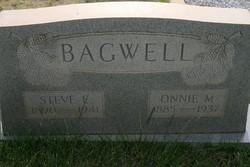 Steve Ellis Bagwell