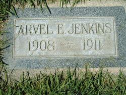 Arvel Emanuel Jenkins