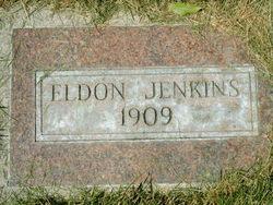 David Eldon Jenkins