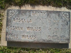 Joshua Willis Batty