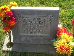 Evan M Bringhurst