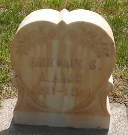 Antone Stewart Lamb