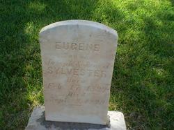 Eugene B Sylvester
