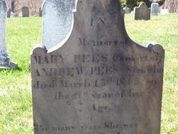 Mary <I>Blakeney</I> Pees