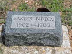 Easter Biddix