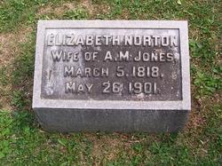Elizabeth <I>Norton</I> Jones