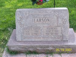 Raymond Larson