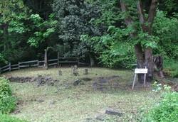 Abernethy Cemetery