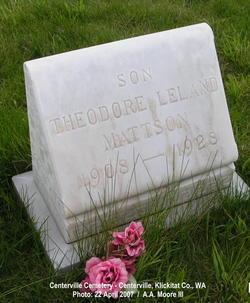 Theodore Leland Mattson