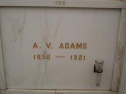 Americus V Adams