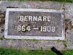 Unknown Bernard