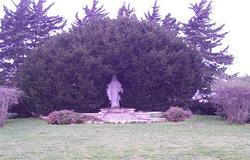 Floral Garden of Memories Cemetery
