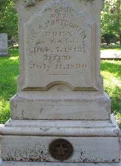 James Nelson Montgomery