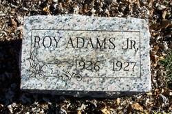 Roy Adams, Jr