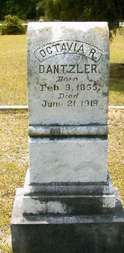 Octavia R Dantzler