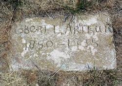 Robert L Arthur