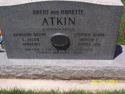 Brent V. Atkin