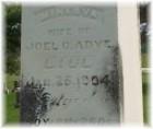 Minerva Emeline <I>Walker</I> Adye