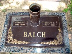 Ronald E Balch