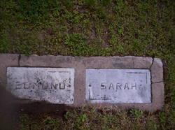 Sarah E Firmenich