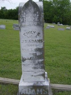 Emily Elizabeth <I>Ingram</I> Adams