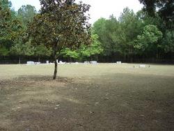 Comerford-Pelt Cemetery