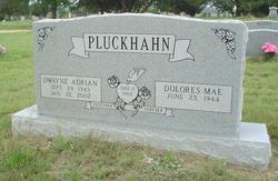 Dewayne Adrian Pluckhahn