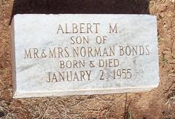 Albert M Bonds