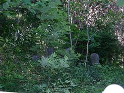 Hatcher-Goodwin-Chapman Family Cemetery