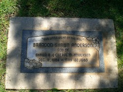Brandon Shawn Anderson