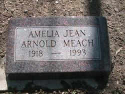 Amelia Jean Bruin
