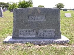 Catherine Elizabeth <I>Moore</I> Agee
