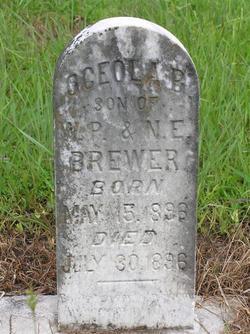 Osceola B. Brewer